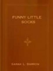 Funny Little Socks