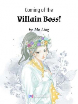 Coming Of The Villain Boss!