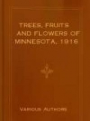 Trees, Fruits and Flowers of Minnesota