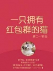 A Cat With A Red Envelope Group
