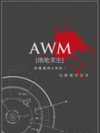 AWM: PUBG